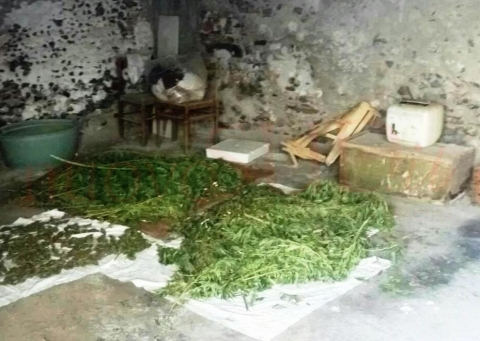 19 kg di marijuana nel garage. Ancora un arresto per droga a Paternò