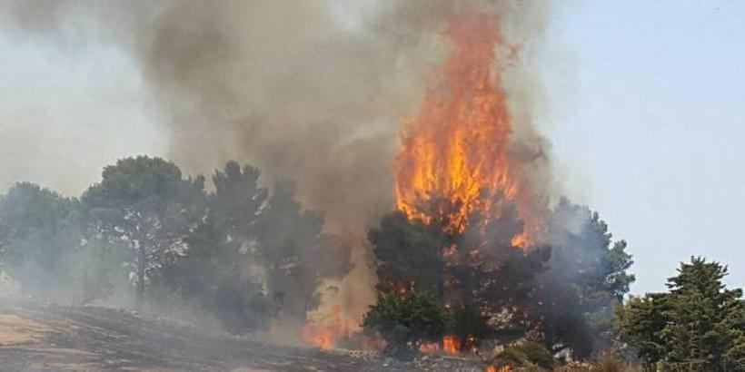 Incendi: la Cgil si scaglia contro la Regione siciliana