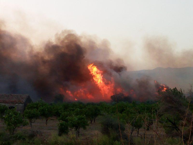 Paura a Trappetazzo per un grosso incendio
