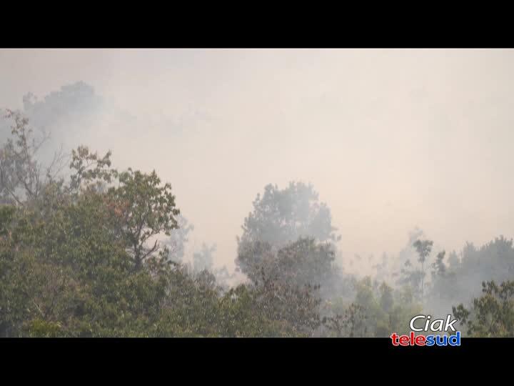 Incendio nell'area del parco dell'Etna